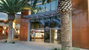 A trip to the Aveda Salon!